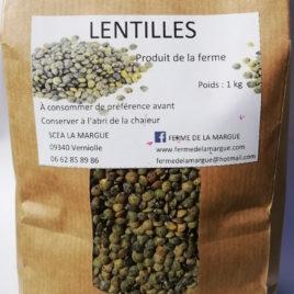 Lentilles vertes 1 kg